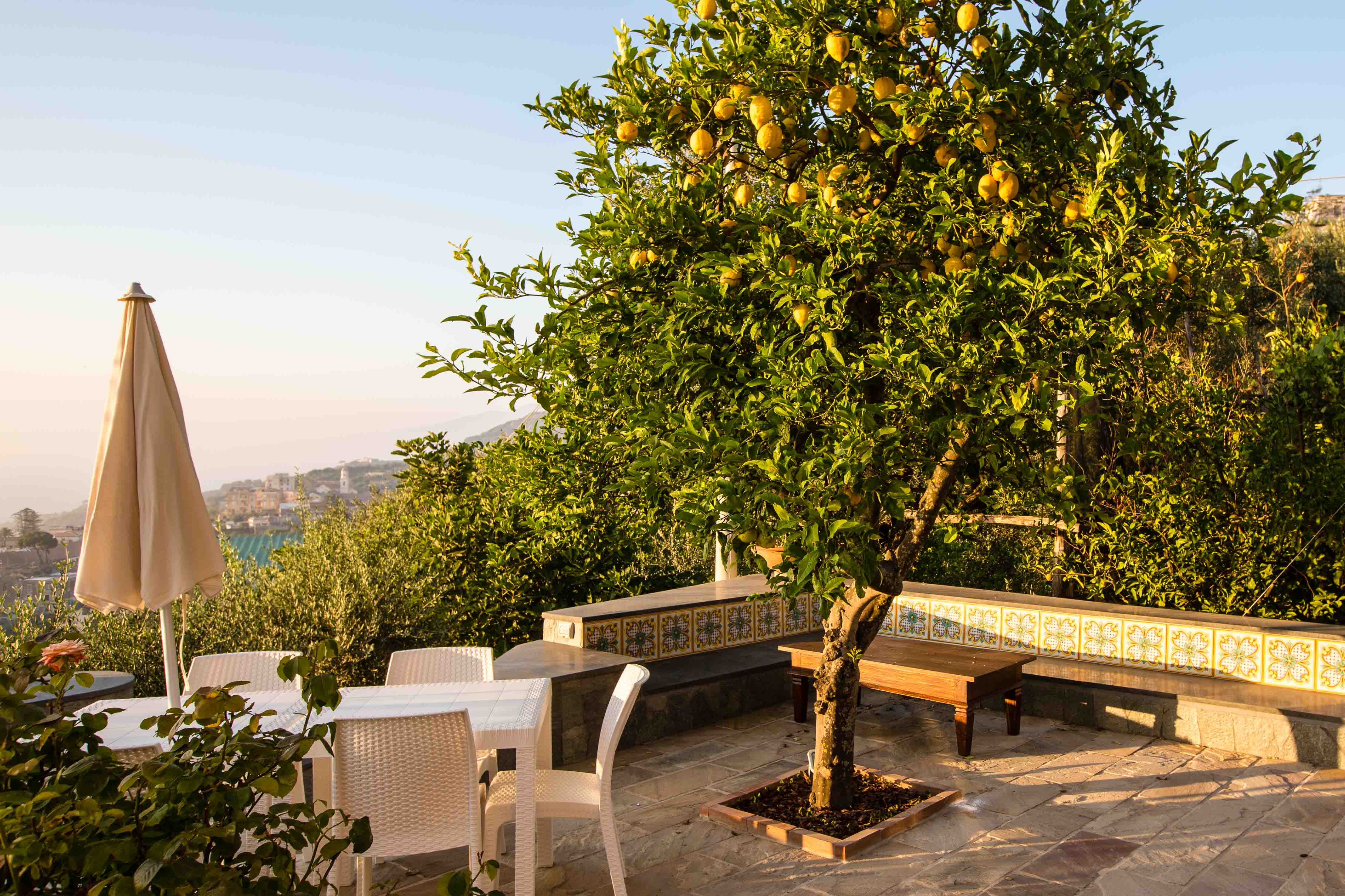 The Garden – Antonio Massa Lubrense